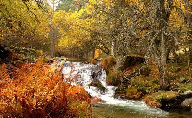 naturaleza-en-rascafria-y-el-valle-del-paular-1