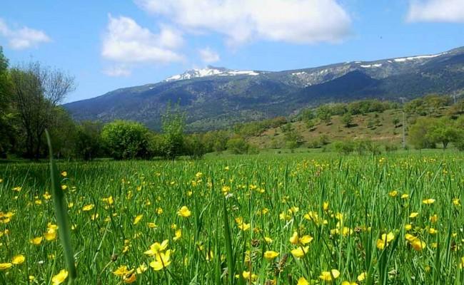 naturaleza-en-rascafria-y-el-valle-del-paular-3