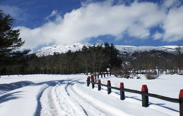 Nieve y estaciones de esquí en Rascafria