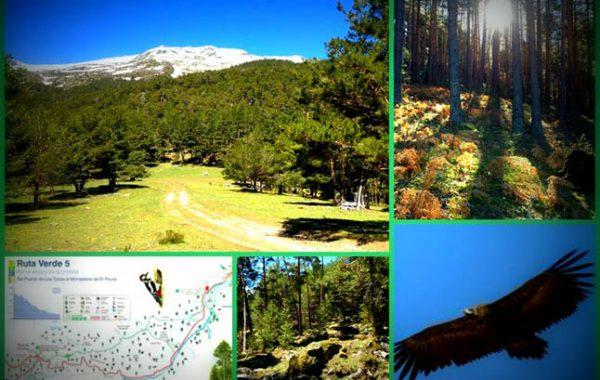 rutas-paseos-por-rascafria-valle-del-paular-1