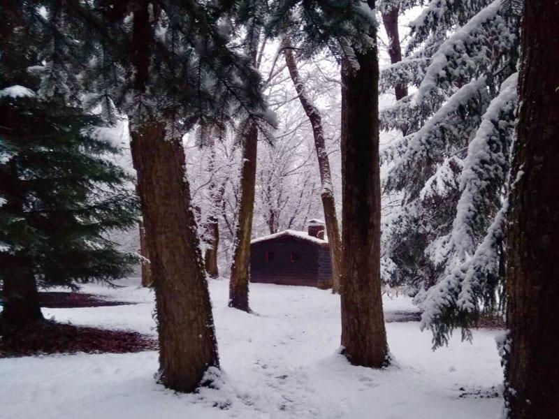 Nieve en el Bosque de Finlandia en Rascafría