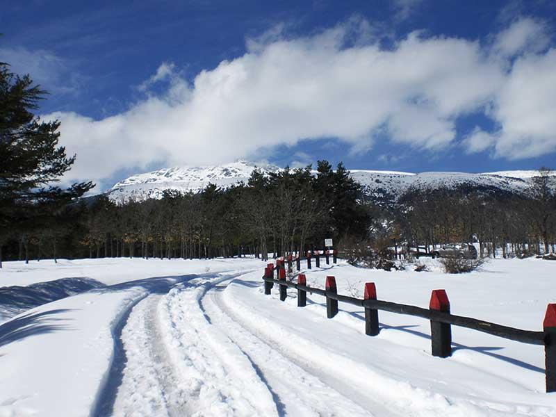 Nieve y montañas nevadas en Rascafría